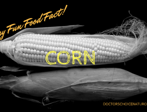Friday Fun Food Fact: Corn